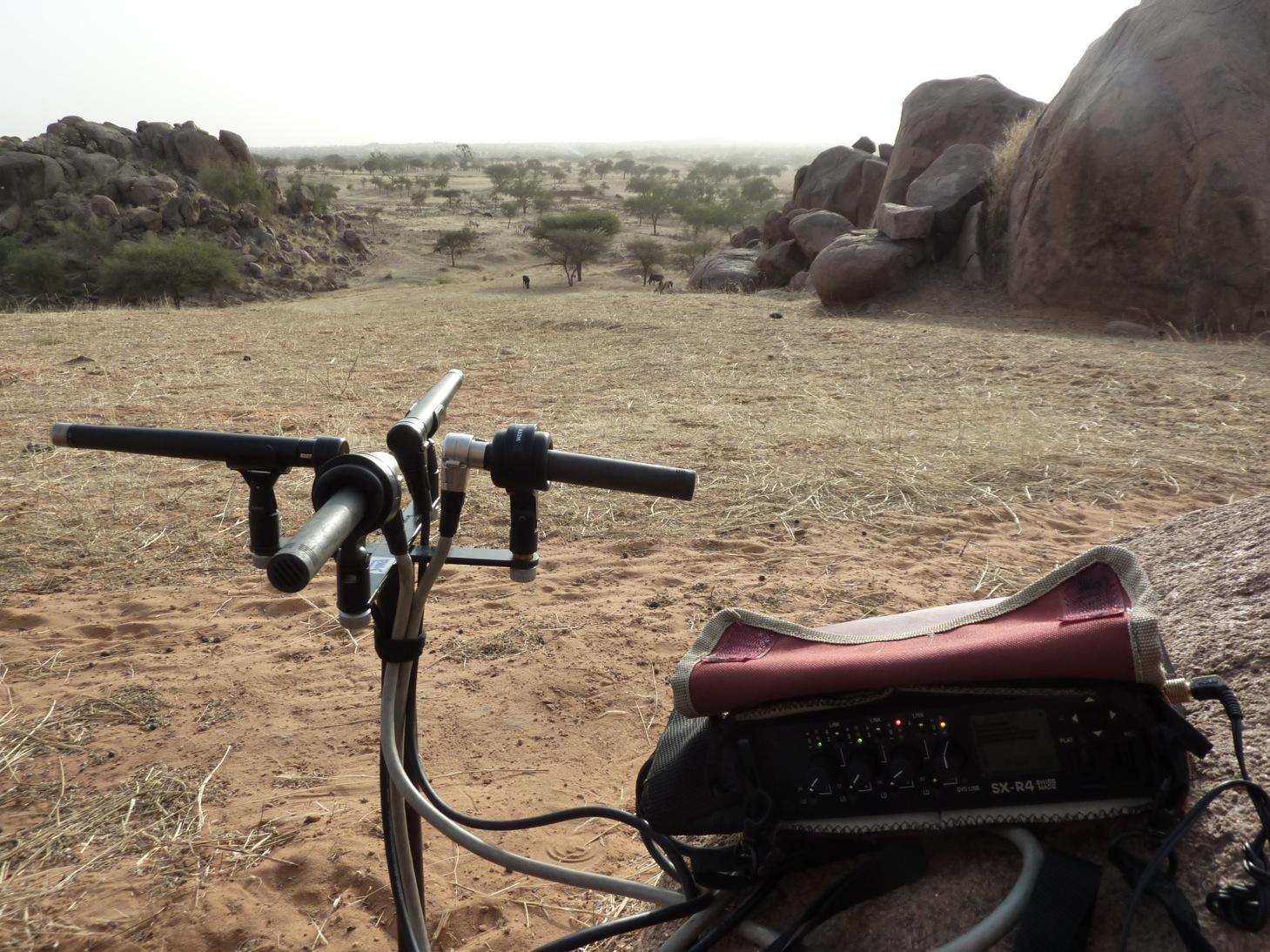 du Sahel… aux Salants